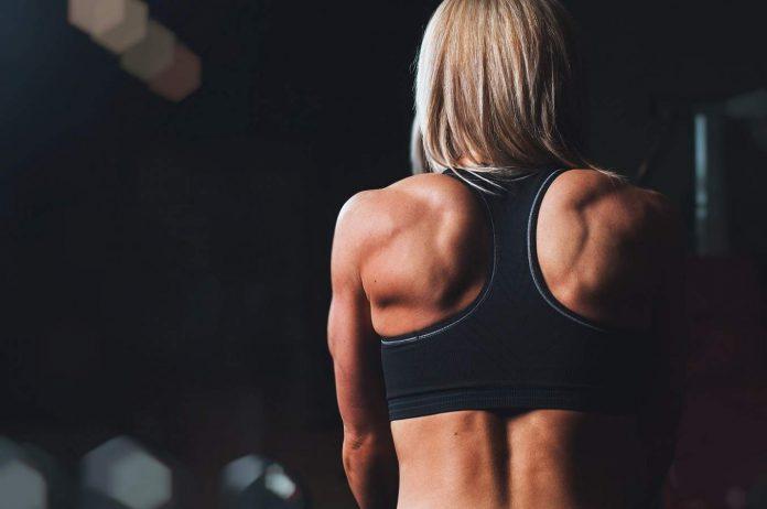 Gravid träning